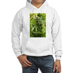 Grkle (with name) Hooded Sweatshirt