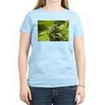 Harlequin (with name) Women's Light T-Shirt