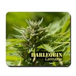 Harlequin (with name) Mousepad
