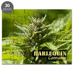 Harlequin (with name) Puzzle