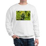 Joseph OG (with name) Sweatshirt