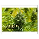Joseph OG (with name) Small Poster