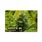 Joseph OG (with name) Rectangle Magnet (10 pack)