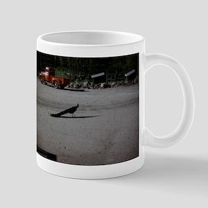 PICT0053 Mugs