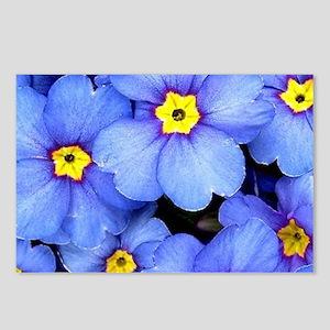 Blue Wildflowers Postcards (Package of 8)