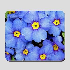 Blue Wildflowers Mousepad