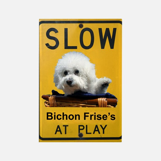 bichons at play Rectangle Magnet