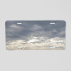 Secrets Aluminum License Plate