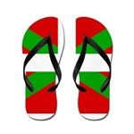 Basque Flag Flip Flops