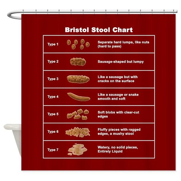 Bristol Stool Chart Shower Curtain By BristolStoolChart