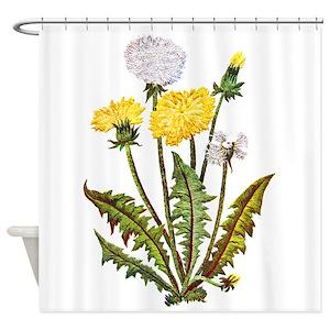Crewel Shower Curtains
