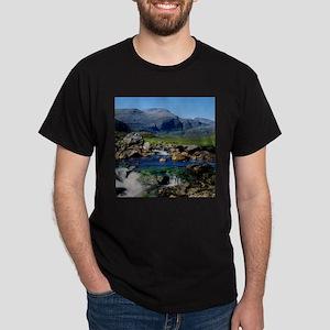 THE CLISHAM T-Shirt