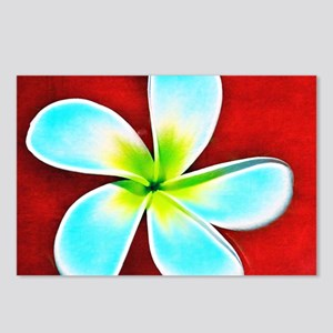 Flower Tropical Red White Postcards (Package of 8)