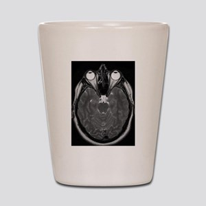 MRI Shot Glass
