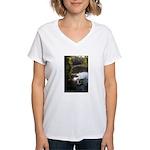 Otter Paradise Women's V-Neck T-Shirt
