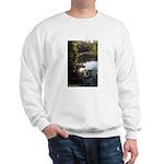 Otter Paradise Sweatshirt