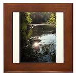 Otter Paradise Framed Tile
