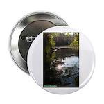 Otter Paradise Button