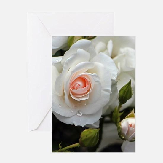 Rose20151101 Greeting Cards