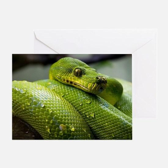 Cool Snake Greeting Card