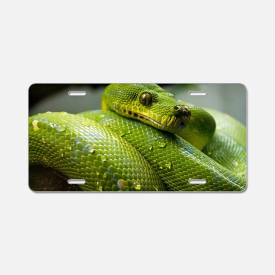 Unique Snake Aluminum License Plate