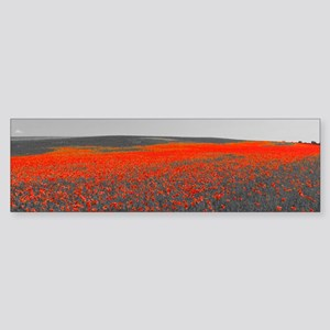 Poppy Field - Remember Bumper Sticker