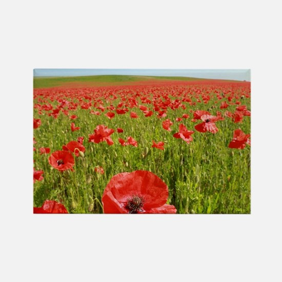Poppy Field PRO PHOTO Magnets