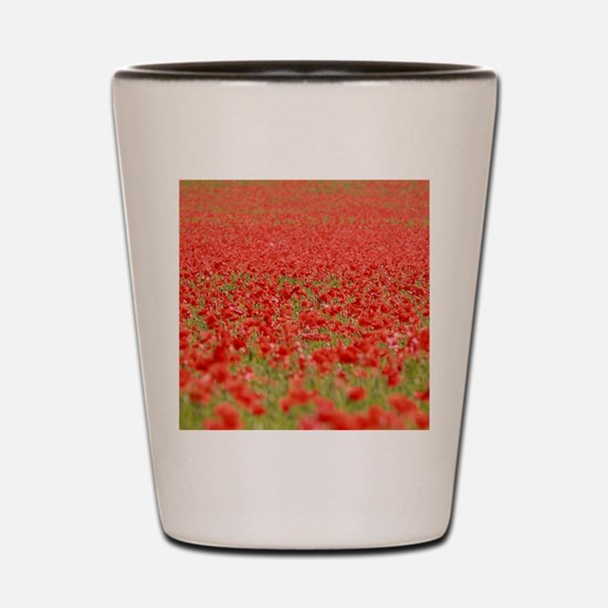Poppy Field - Pro Photo Shot Glass