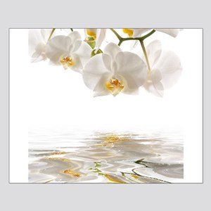 White Orchids Small Poster