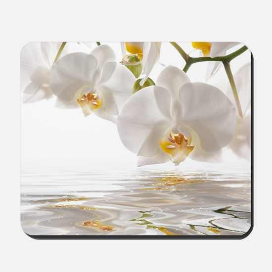 White Orchids Mousepad