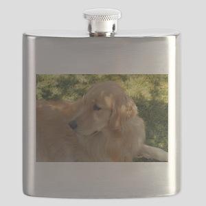 golden retriever grass Flask