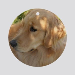 golden retriever grass Round Ornament