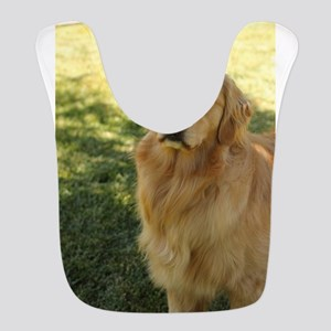 golden retriever n Bib