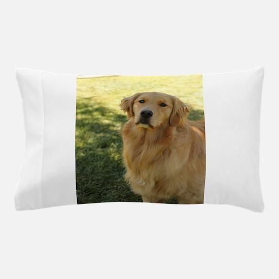 golden retriever n Pillow Case