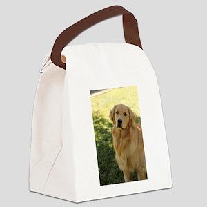 golden retriever n Canvas Lunch Bag