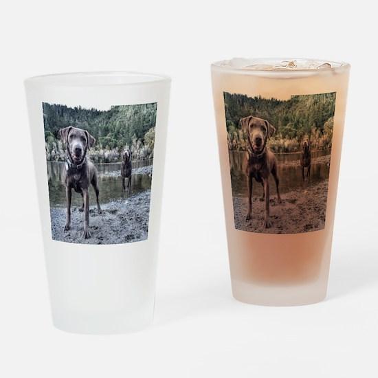Unique Labrador Drinking Glass