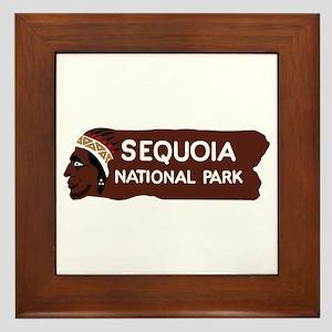 Sequoia National Park, California - US Framed Tile