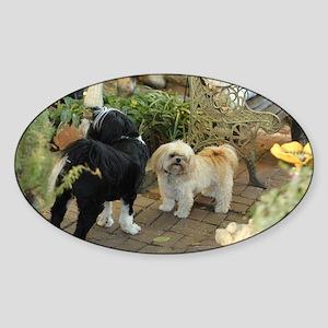 tibetan terrier & lhasa Sticker