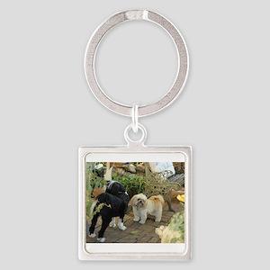 tibetan terrier & lhasa Keychains