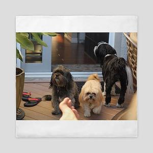 3 dogs and foot Queen Duvet