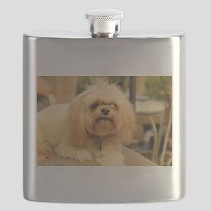 Koko blond lhasa small Flask