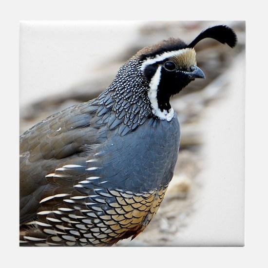 Unique T bird mens Tile Coaster
