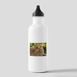 golden retriever grass Stainless Water Bottle 1.0L