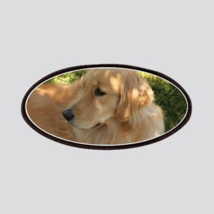 golden retriever grass Patch