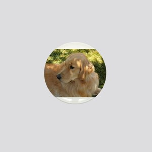 golden retriever grass Mini Button