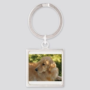 golden retriever grass Keychains