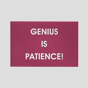 GENIUS IS PATIENCE! Magnets