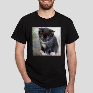 Cat003 T-Shirt