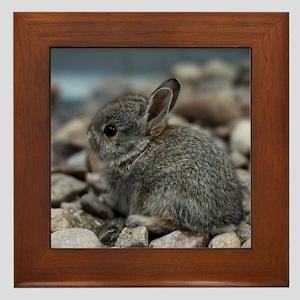 SMALL BABY BUNNY Framed Tile