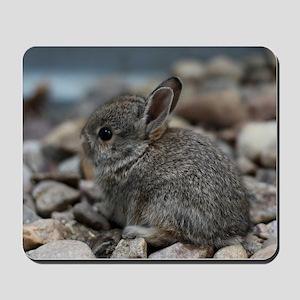 SMALL BABY BUNNY Mousepad